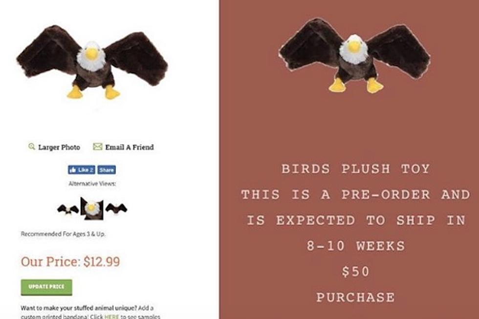 uffed penguin doll - eBay